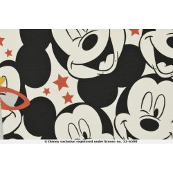 Mickey en Minnie Mouse Disney Tricot 130664 3001