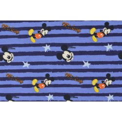 Mickey en Minnie Mouse Disney Tricot 130666 3001