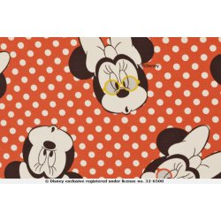 Mickey en Minnie Mouse Disney Tricot 130665