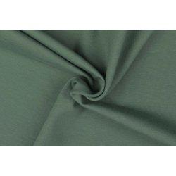 Organic Katoenen Jersey Uni 129322 5031 groen