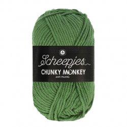 Scheepjes Chunky Monkey 100g - 1824 Pickle