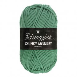 Scheepjes Chunky Monkey 100g - 1725 Eucalyptus