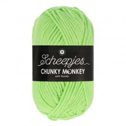 Scheepjes Chunky Monkey 100g - 1316 Pistachio