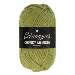 Scheepjes Chunky Monkey 100g - 1065 Sage