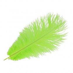 Pieten veer groen 22 of 30 cm