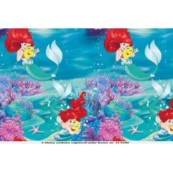 Ariel Disney Tricot 127227 0801