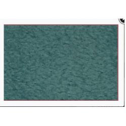Polar Fleece Antipilling 110704 5427