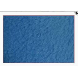 Polar Fleece Antipilling 110704 7029