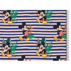 Mickey en Minnie Mouse Disney Tricot 133091 0801