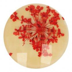Knoop bloem maat 40 - 25.00mm Oranje Creme