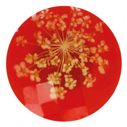 Knoop bloem maat 40 - 25.00mm Rood Geel 722