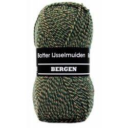 Bergen Sokkenwol van Botter IJsselmuiden Kleur 185