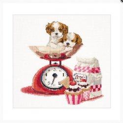 Thea G. Cupcake Puppy op Aida