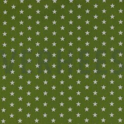 Poplin Kleine Sterretjes 04955 V Groen 017