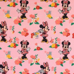 Mickey en Minnie Mouse Disney Tricot 133093 0801