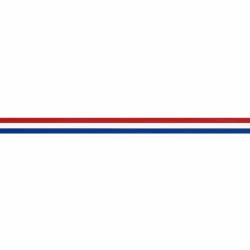 NEDERLANDS VLAGGENBAND 10MM
