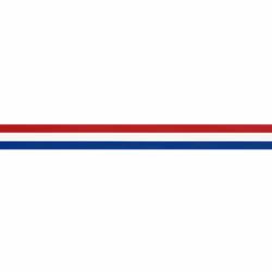 NEDERLANDS VLAGGENBAND 15MM