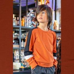 Stof voor Sweater model B2155-B uit BTrendy herfst winter 2021 art French Terry 92% Katoen 05470 Brique 056