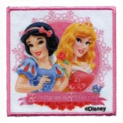 Appl. Disn.prinsesjes in lijst  013.9897