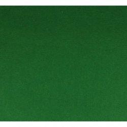 Vilt lapje Groen 30x20cm 10100-040
