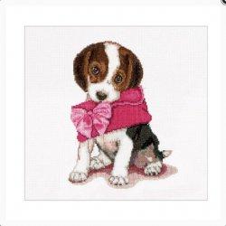 Thea G. Puppy Love Aida