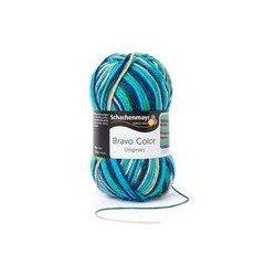 Bravo Color Schachenmayr 50 gram kleur 2119