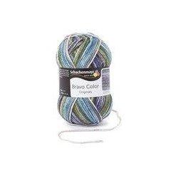Bravo Color Schachenmayr 50 gram kleur 2122