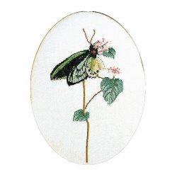 Thea G.Vlinder groen op Aida of Linnen