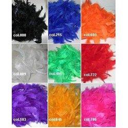 Gekleurde veren boa's